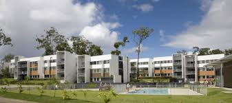 Student accommodation gold coast - Griffith university gold coast swimming pool ...