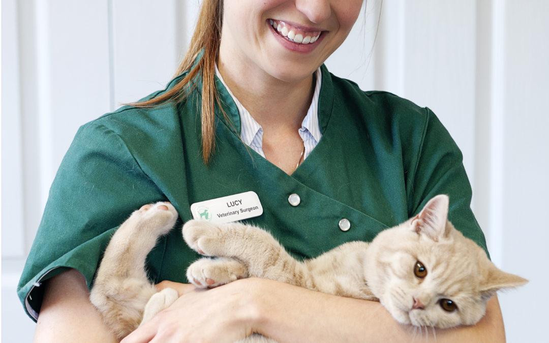 Study Veterinary Nursing