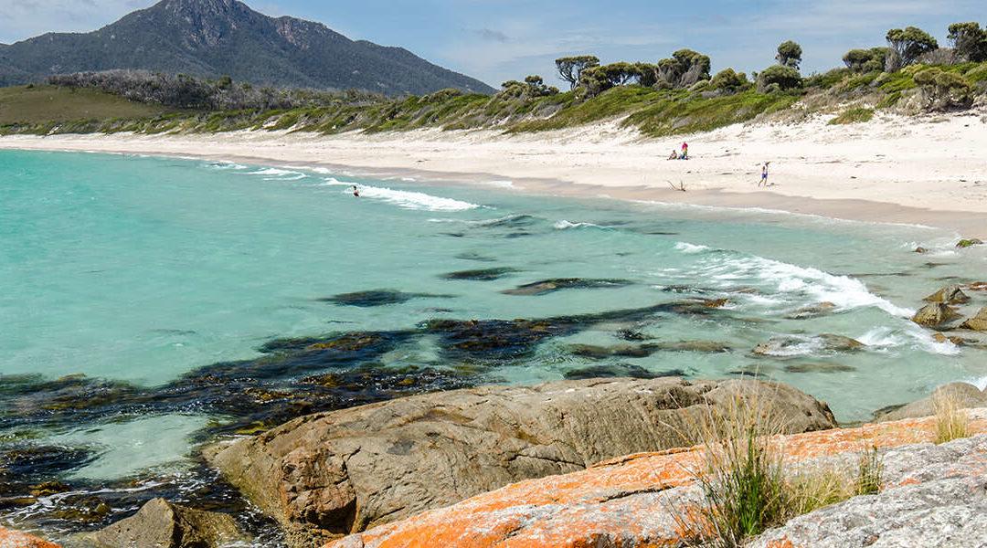 Tasmania Graduate Nomination for 190 or 491 visa