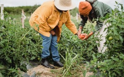 Study Horticulture and Potential Migration Pathways